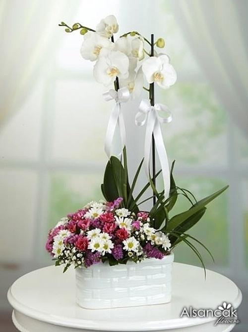 Orkide Balkon Seramikte