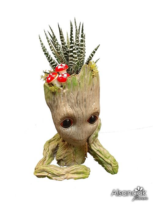 Düşünen Groot Howartia